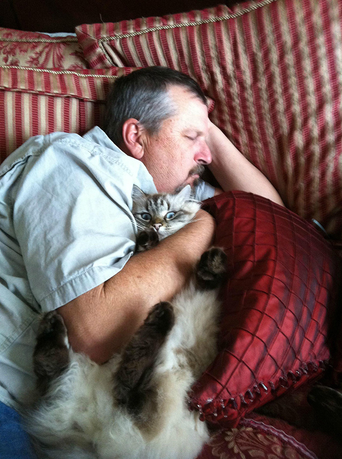 People Who Didn't Want Cats Father Hugging Cat while Sleeping