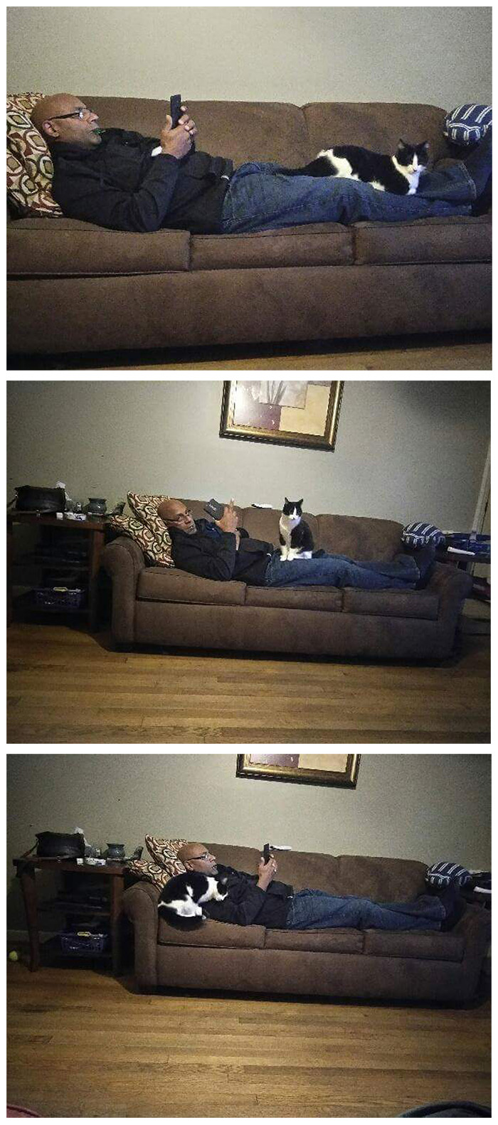 People Who Didn't Want Cats Father Lying on Couch with Cat