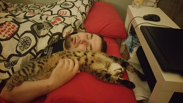 People Who Didn't Want Cats Man Sleeping on Bed with Cat