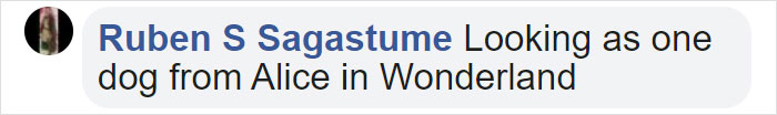Ruben S Sagastume Facebook Comment