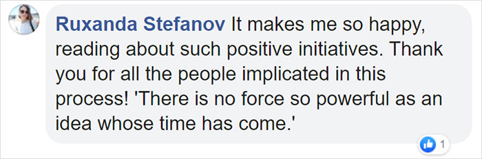 Ruxanda Stefanov Facebook Comment
