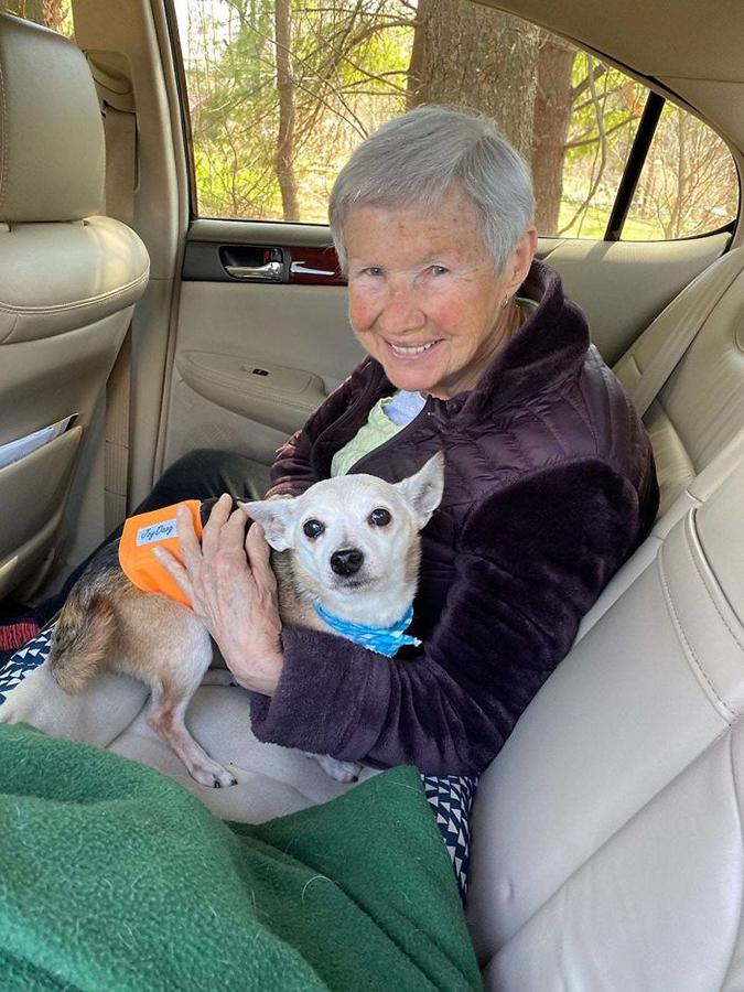 Senior dog gets adopted by senior rescue pet photos
