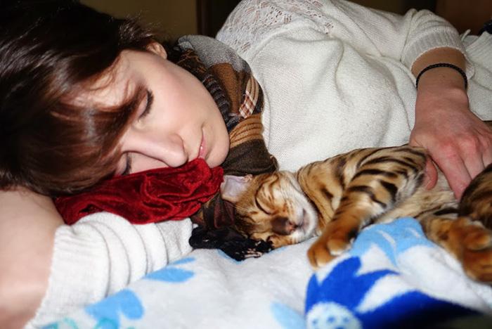 Woman Sleeping Beside Kitten
