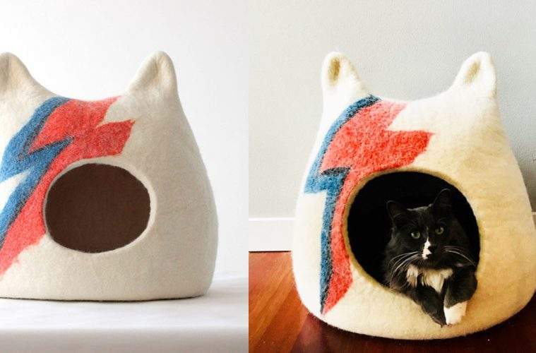 Ziggy Stardust-Inspired Cat Bed