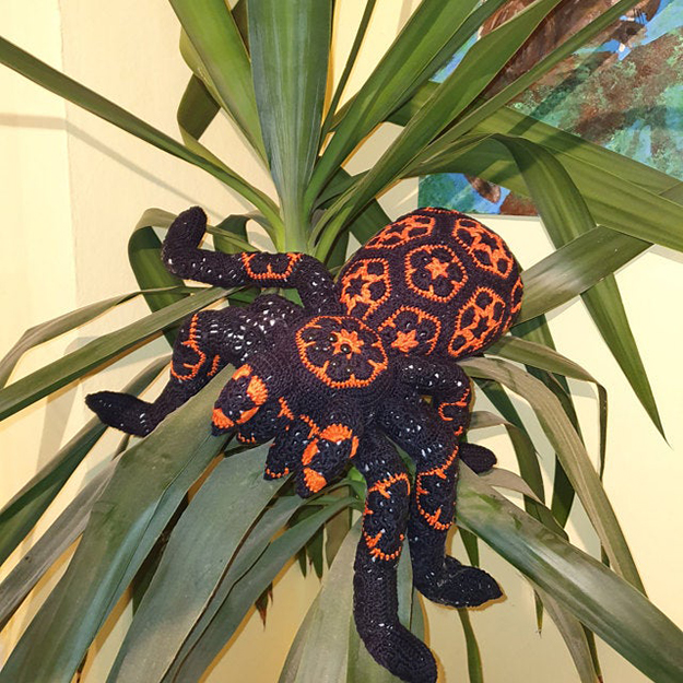 black and orange giant crochet spider on a plant