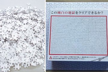 blank white puzzle