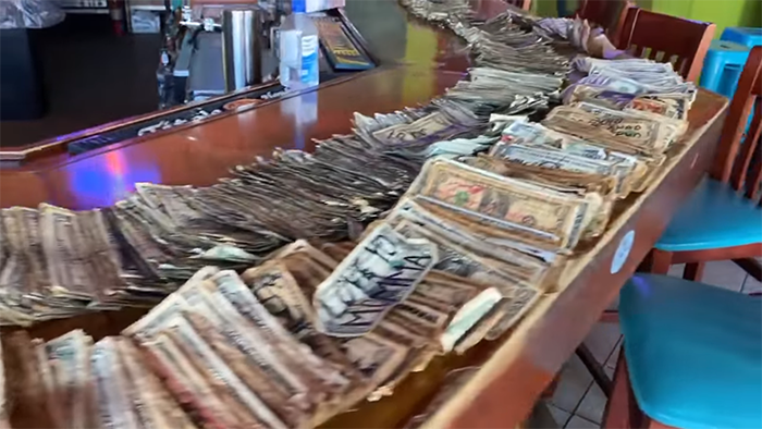dollar bills lined up on the sand bar counter