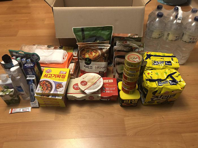 food supply from south korean government