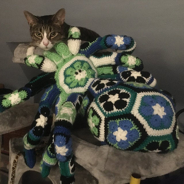 green and blue crochet spider creeps on cat