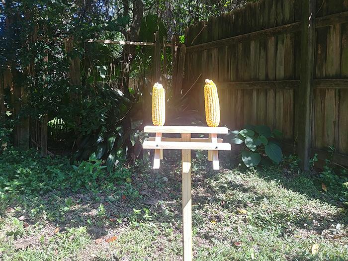ground mounted cedar wood feeder