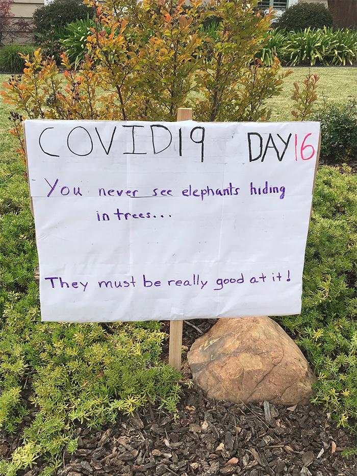 la neighbor dad jokes quarantine day 16
