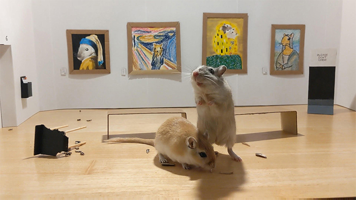 miniature art gallery gerbils