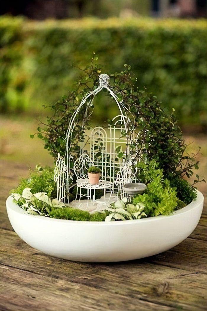miniature landscapes on white saucer