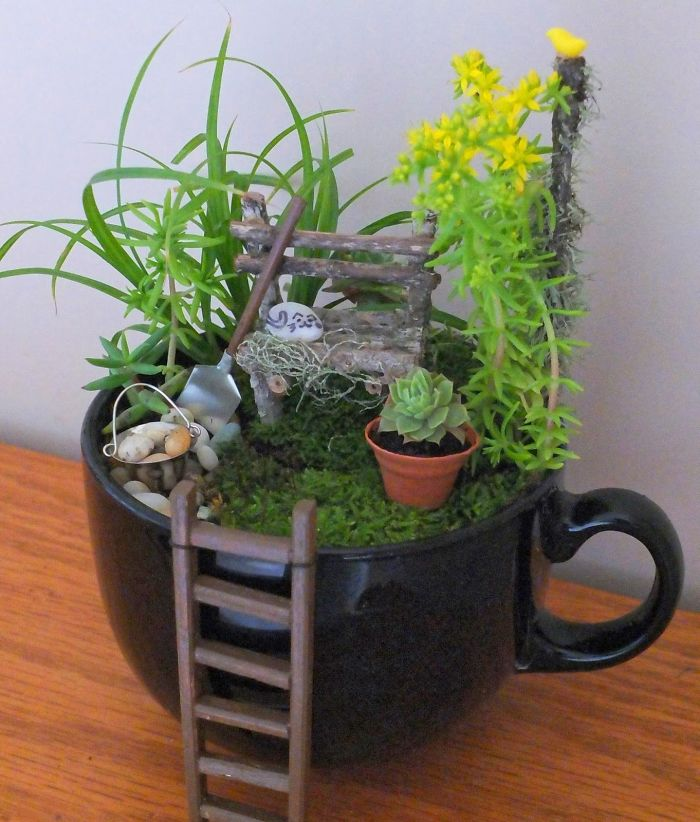 miniature landscapes with ladder