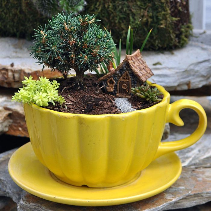 miniature landscapes yellow cup
