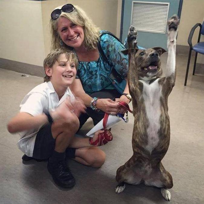 overjoyed rescue pet photos