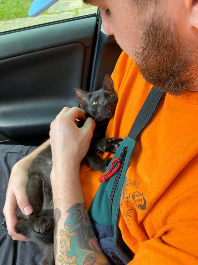 rescue pet photo of black cat being cradled by its new owner