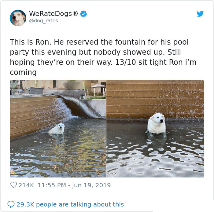 ron lonely pool party