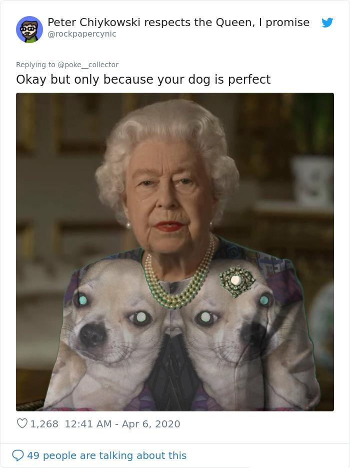 royal green dress memes dogs