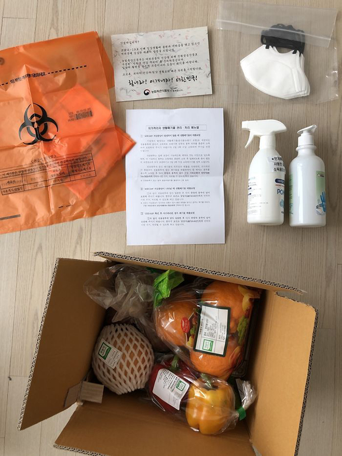 south korean government comfort package with fresh produce, hygeine essentials