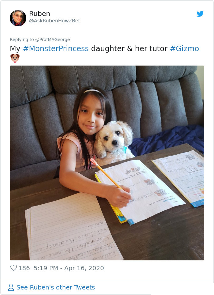 students doing homework with pets