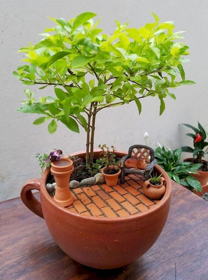 teacup gardens brown clay cup
