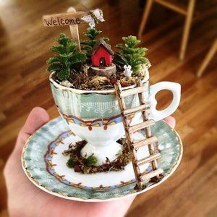 teacup gardens with ladder