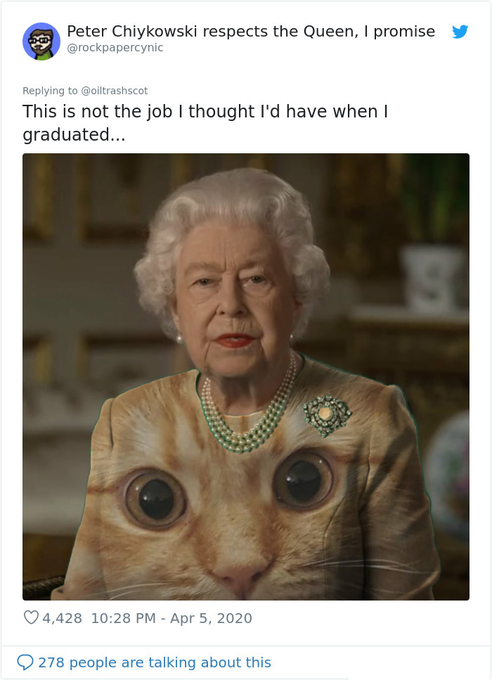 the queen of england memes cat eyes
