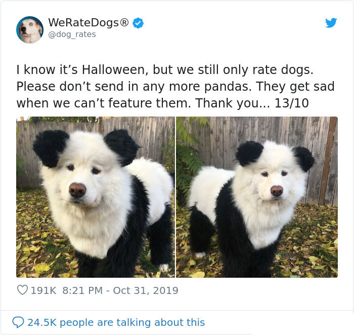 we rate dogs not panda