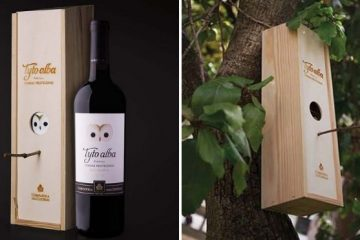 wine bottle box bird house
