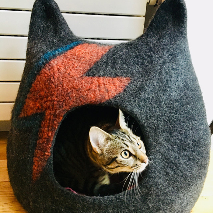 ziggy stardust-inspired cat bed aladdin sane