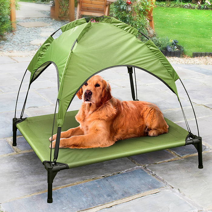 Dog Lying on Green Raised Pet Bed with Canopy