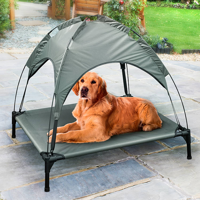 Dog Lying on Grey Raised Pet Bed with Canopy