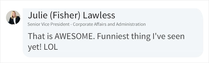 Julie Fisher Lawless LinkedIn Comment on Cara Fields Zoom Video Call Prank Post