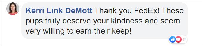 Kerri Link DeMott Facebook Comment FedEx Driver with Dogs