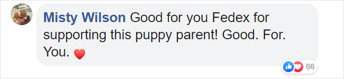 Misty Wilson Facebook Comment FedEx Driver with Dogs