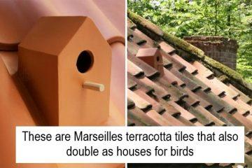 birdhouse roof tiles