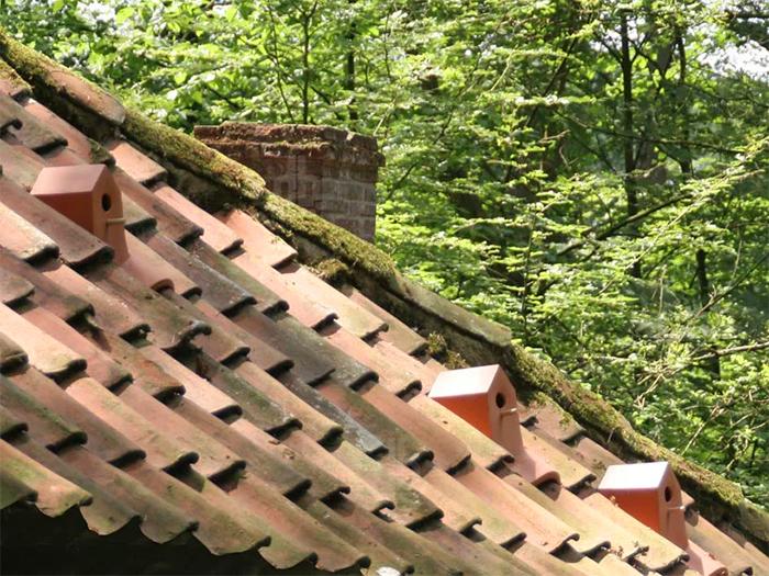 birdhouse roof tiles design