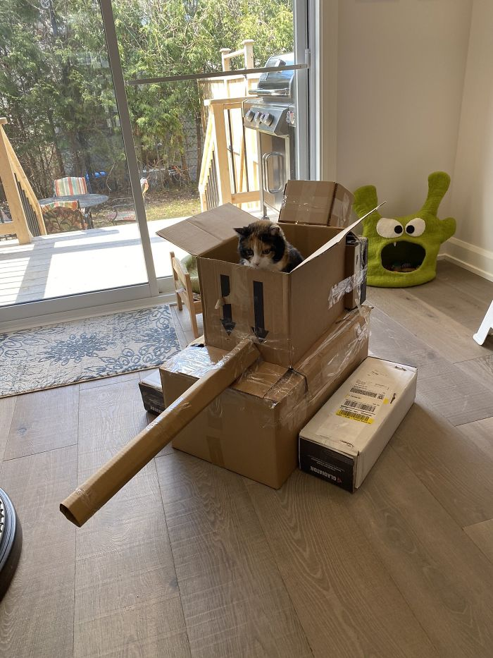 box military vehicle for cats