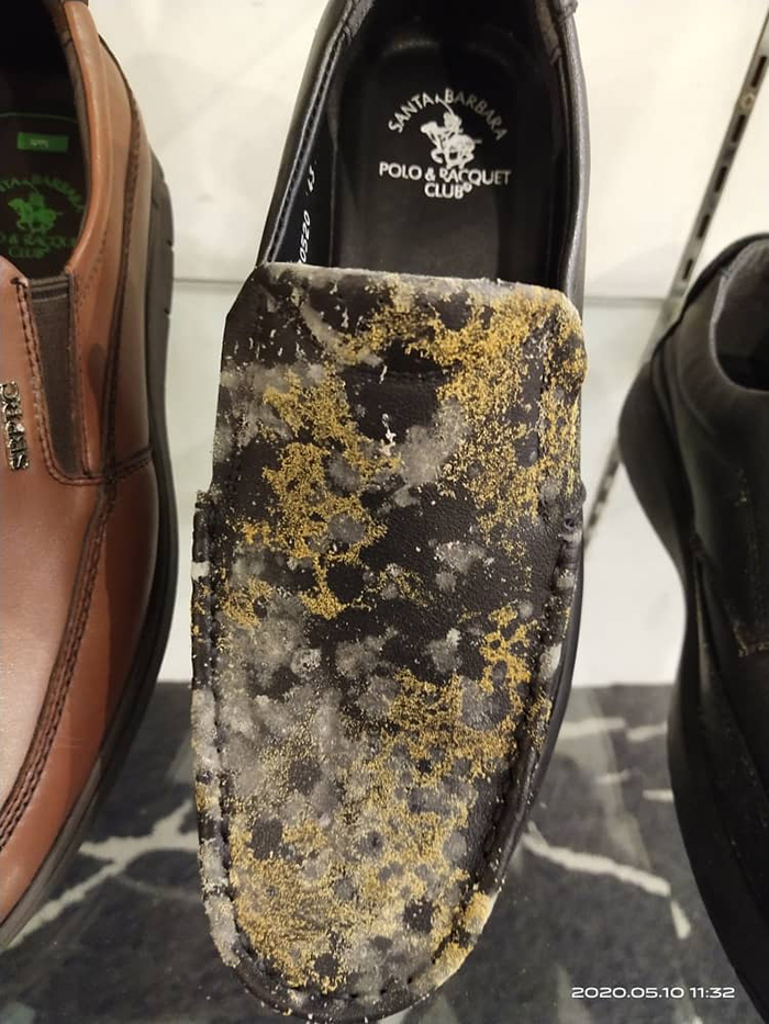 genuine leather shoes mold growth