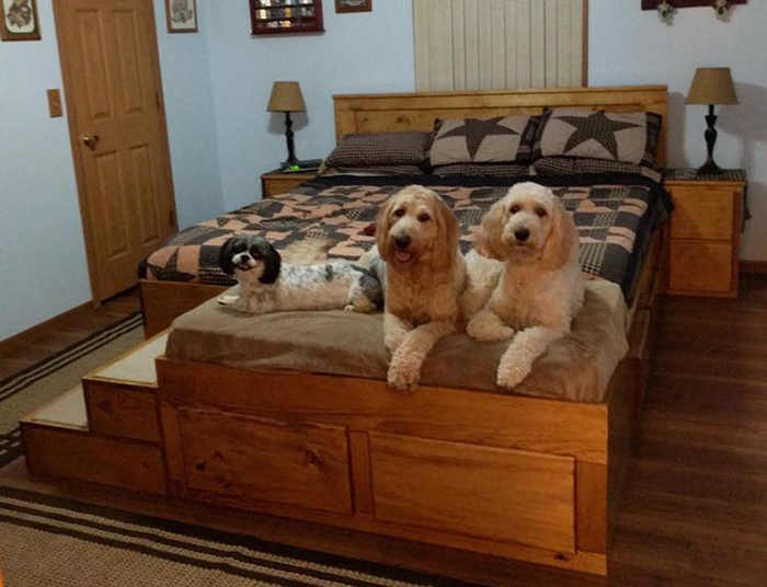 happy dogs using the wooden king bed with dog bed extension