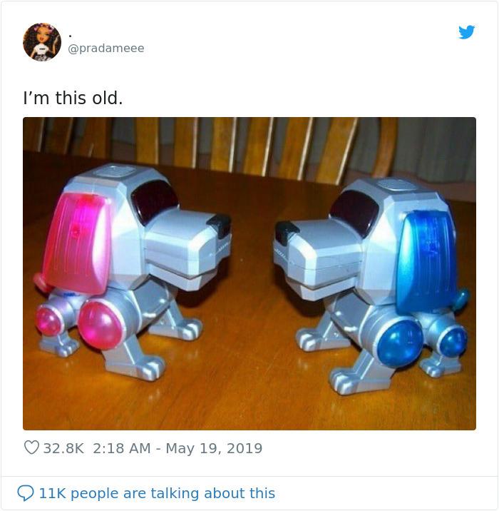 i am this old tweet idogs