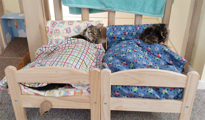 ikea doll beds used as mini beds for cats