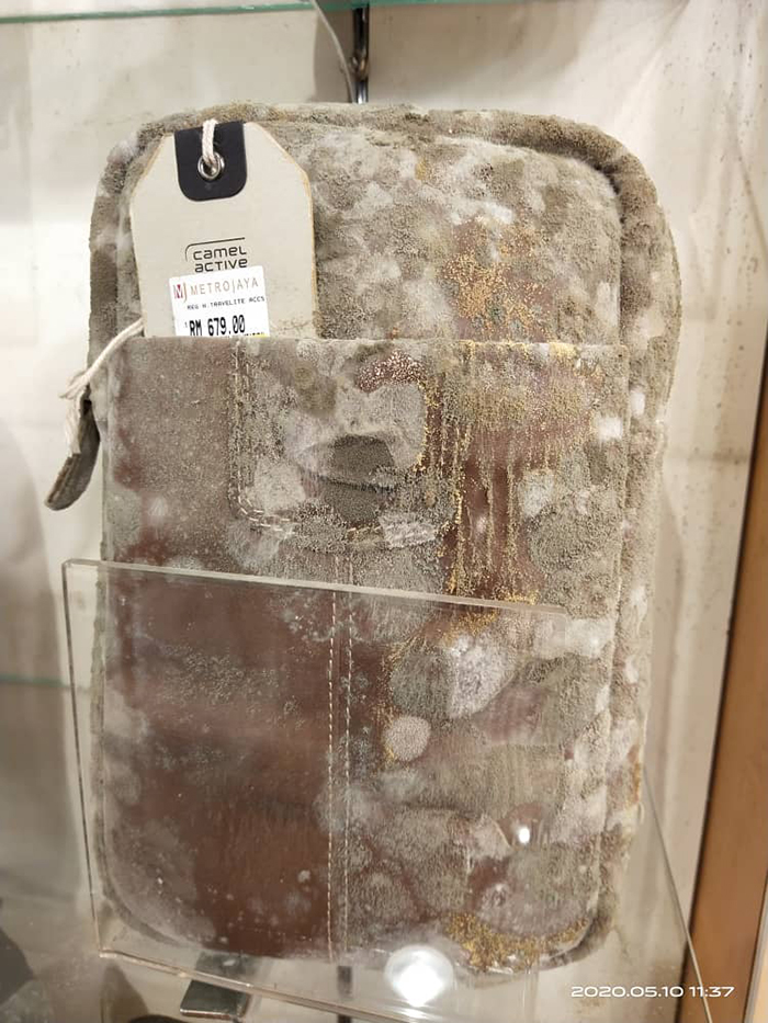 leather bag full of mildew