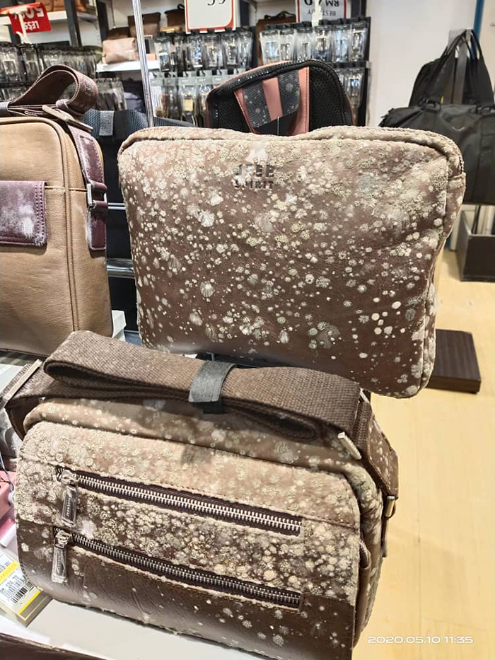 leather bags mold growth