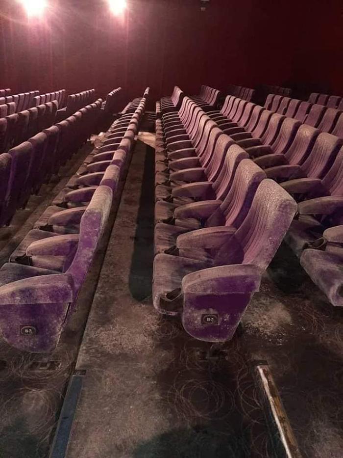 moldy cinema malaysia