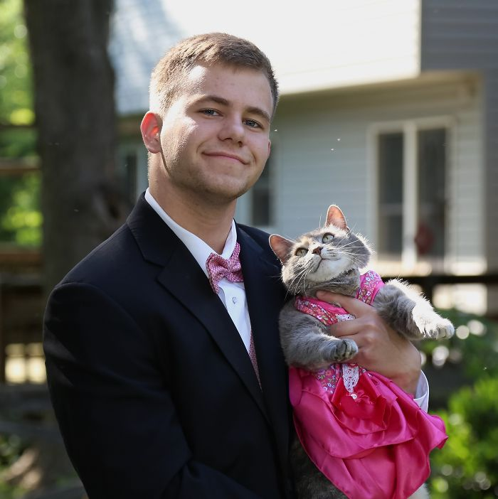prom date kitty
