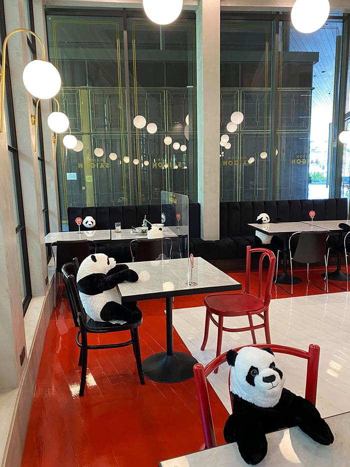 thailand restaurant plush pandas