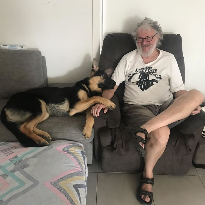 the way this dog looks at his dad