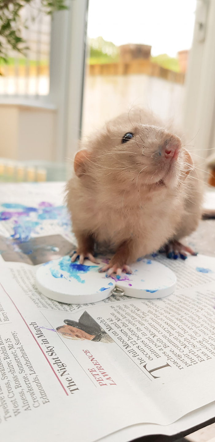 tiny rodent painting on heart-shaped canvas